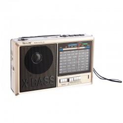 خرید رادیو گولون مدل RX-323BT